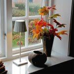 3_6001_lucy_lightson_unplugged_windowsill_maple_72dpi