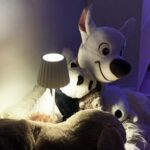 3_6001_lucy_white_lightson_unplugged_teddy_72dpi