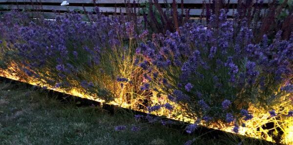 LED Utomhusbelysning Shape Plug & Play (12 V)